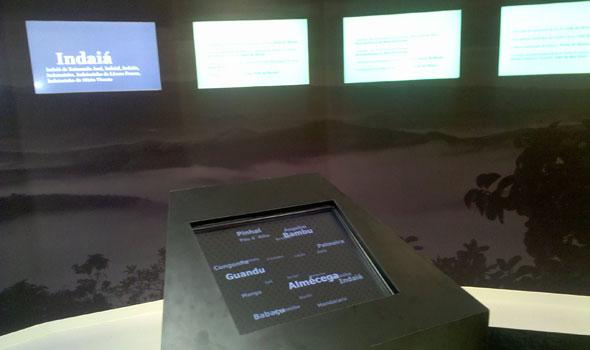 Tela de interação da instalação sobre fitotopônimos.